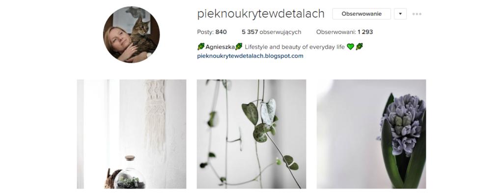 Sobotnia polecajka .2 - Piękno ukryte w detalach, Instagram | My small big creation